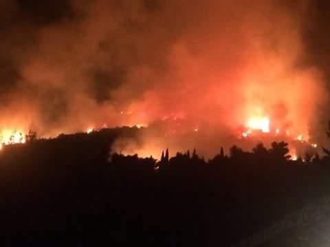 Mentre a Terracina il Comune tarda a rispondere all'accesso agli atti inerenti agli obblighi derivanti dalla normativa sugli incendi il WWF interviene in campo nazionale