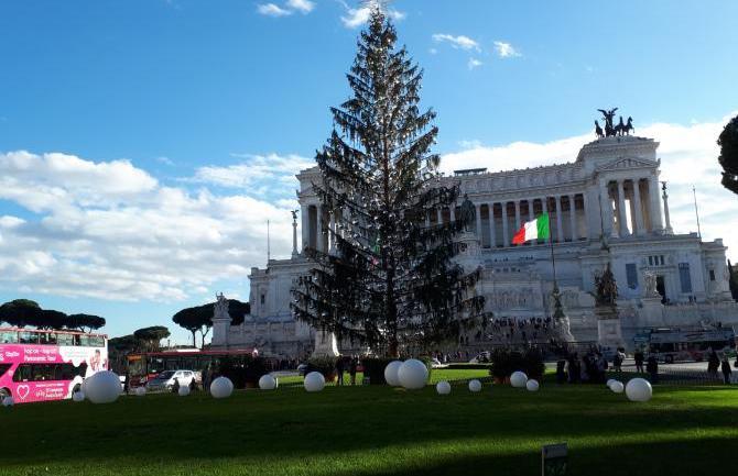 """Roma. Comune, Maritato (FI):""""Albero spelacchio e trasparenza zero M5S"""