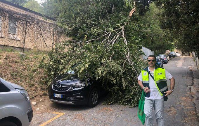 Straordinari impegnativi per la Protezione Civile di San Felice Circeo