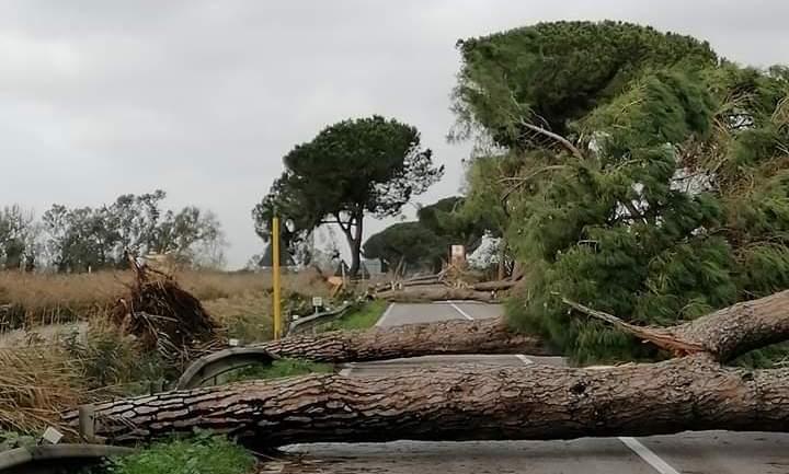Latina – provincia. Imperversa il maltempo, danni e feriti