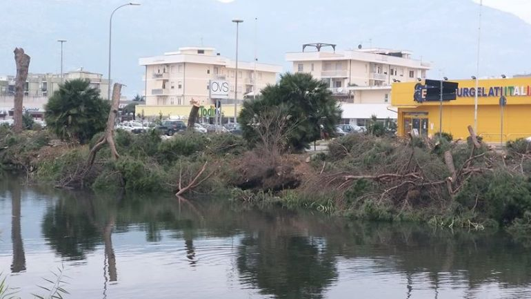 Terracina. Strage di alberi, Legambiente invia esposto ai carabinieri forestali