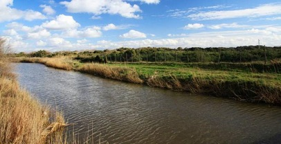 Ambiente:ok a piano e regolamento della riserva naturale statale Litorale Romano