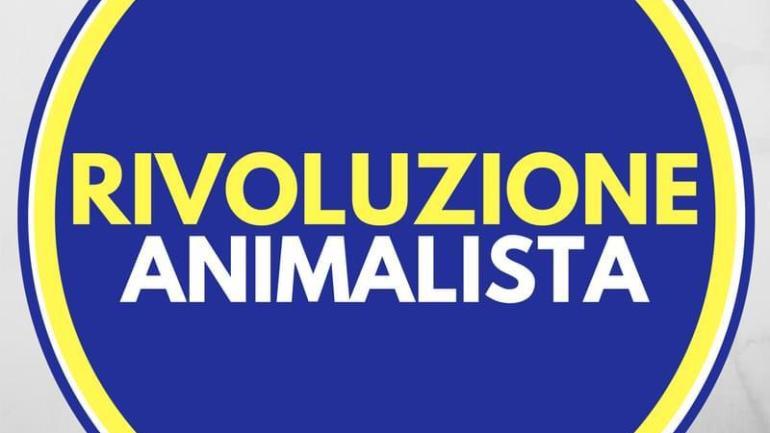 """Randagismo, Rivoluzione Animalista:""""Segnalate maltrattamenti e canili lager"""""""