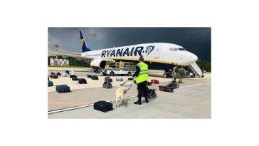 A propos de l'avion qui assurait une liaison entre deux pays de l'UE contraint de se poser à Minsk