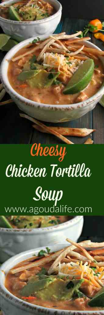 Cheesy Chicken Tortilla Soup, creamy, cheesy tasty soup packed with chicken, garbanzo beans, chipotle pepper for smoky heat and topped with tortilla crisps.