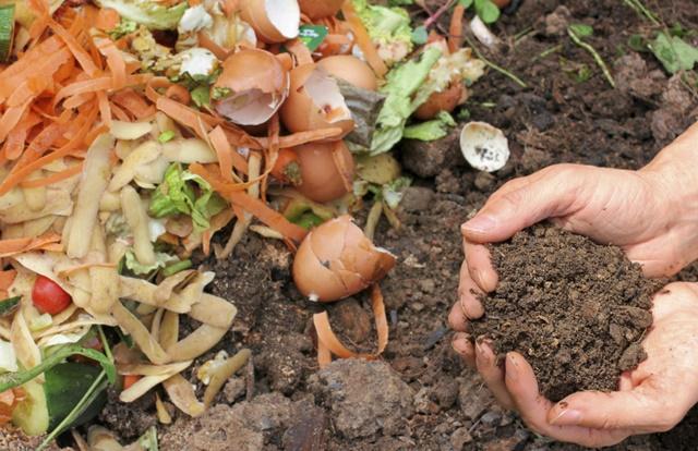 A compostagem conta com a ação dos microrganismos dos materiais orgânicos utilizados.