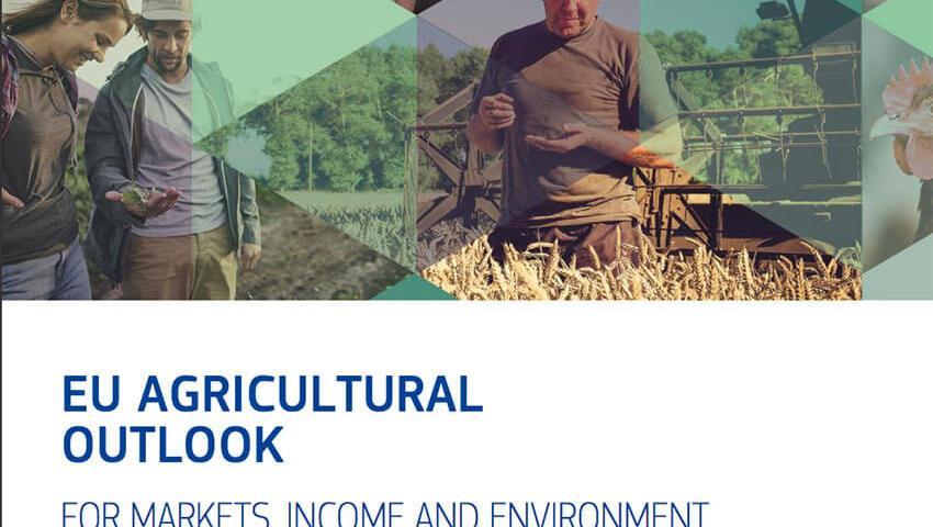 Le previsioni al 2030 della Commissione Ue per le produzioni agricole