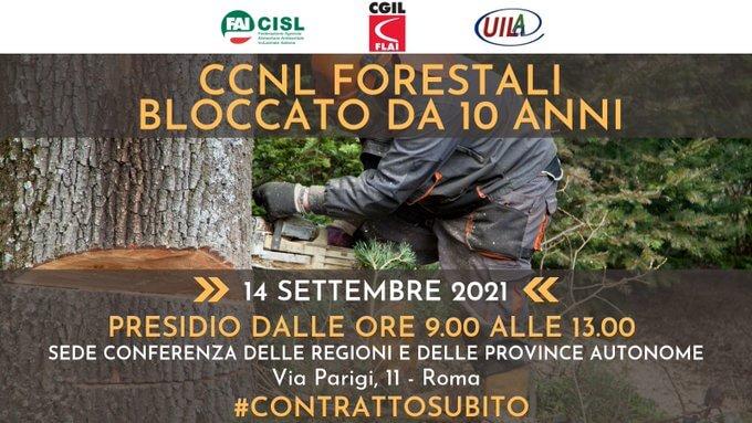 Forestali: prosegue la mobilitazione per ottenere il rinnovo Ccnl del settore