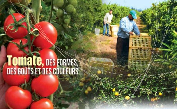 Agriculture du Maghreb No 76 Juin 2014