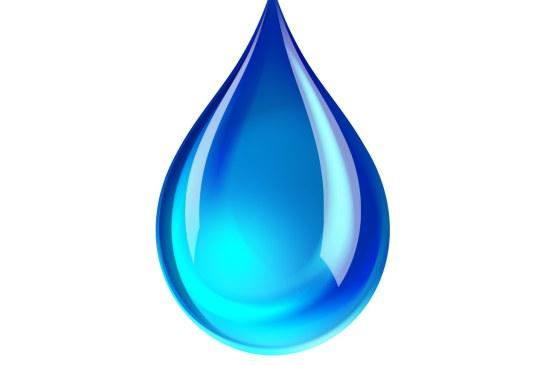 Naissance de la Fédération des associations de l'Irrigation FMAPI