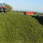 Alimentation « Notre or vert c'est l'ensilage d'herbe »