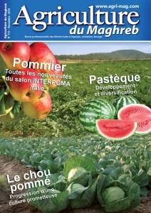 115 Agriculture du Maghreb Nov-18