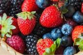 Dossier FRUITS ROUGES: Succès indéniable et diversification réussie
