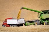Note du ministère sur la commercialisation des céréales de la récolte 2019