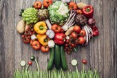 À la découverte des fruits et légumes de demain