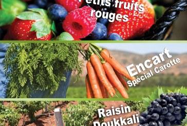 122 Agriculture du Maghreb Sept/Oct 19