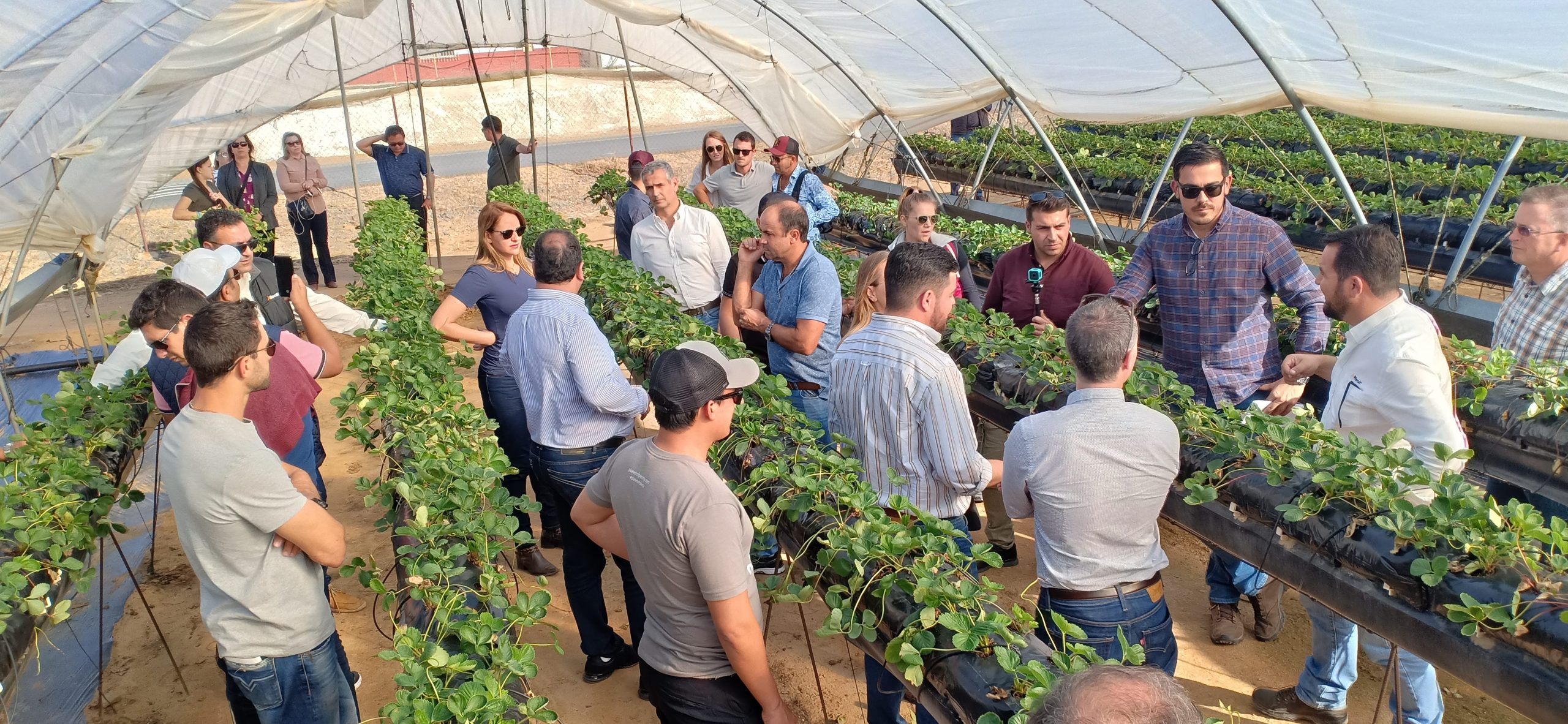 Alltech Crop Science: Des produits innovants satisfaisant producteurs et consommateurs