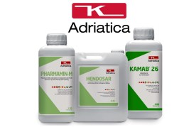 ADRIATICA Group: Le spécialiste Italien des engrais et fertilisants Innovants développe ses activités au Maroc et en Afrique