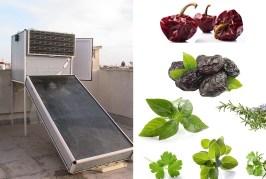 SÉCHOIR SOLAIRE: Un outil efficient pour petits agriculteurs