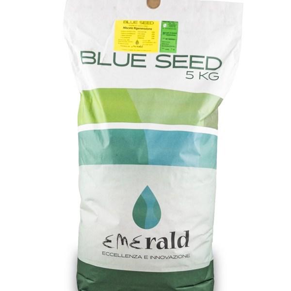 Sementi Blue Seed Rigenerazione