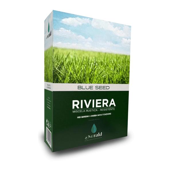 Sementi Blue Seed Riviera