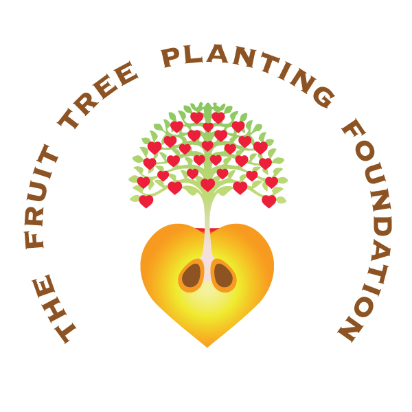 Apply for Fruit Tree Planting Foundation Assistance for Fruit Orchards