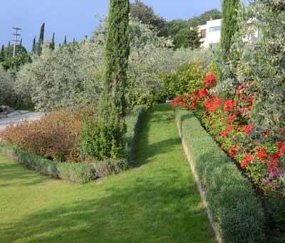L'azienda agricola Carlo Tanganelli a Castiglion Fiorentino (Ar)