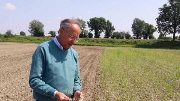 Lo sguardo di Aldo Paravicini sulle sue colture