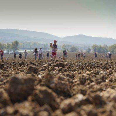 Seminare il futuro si è svolto presso l'azienda agricola Montalera nel 2018