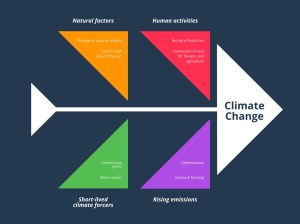 Colorful Climate Change Fishbone Diagram  Agriculture