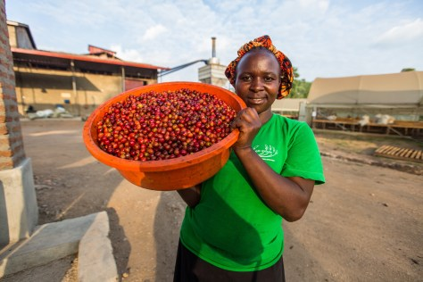 Member of the workforce at our Kisinga Coffee Station