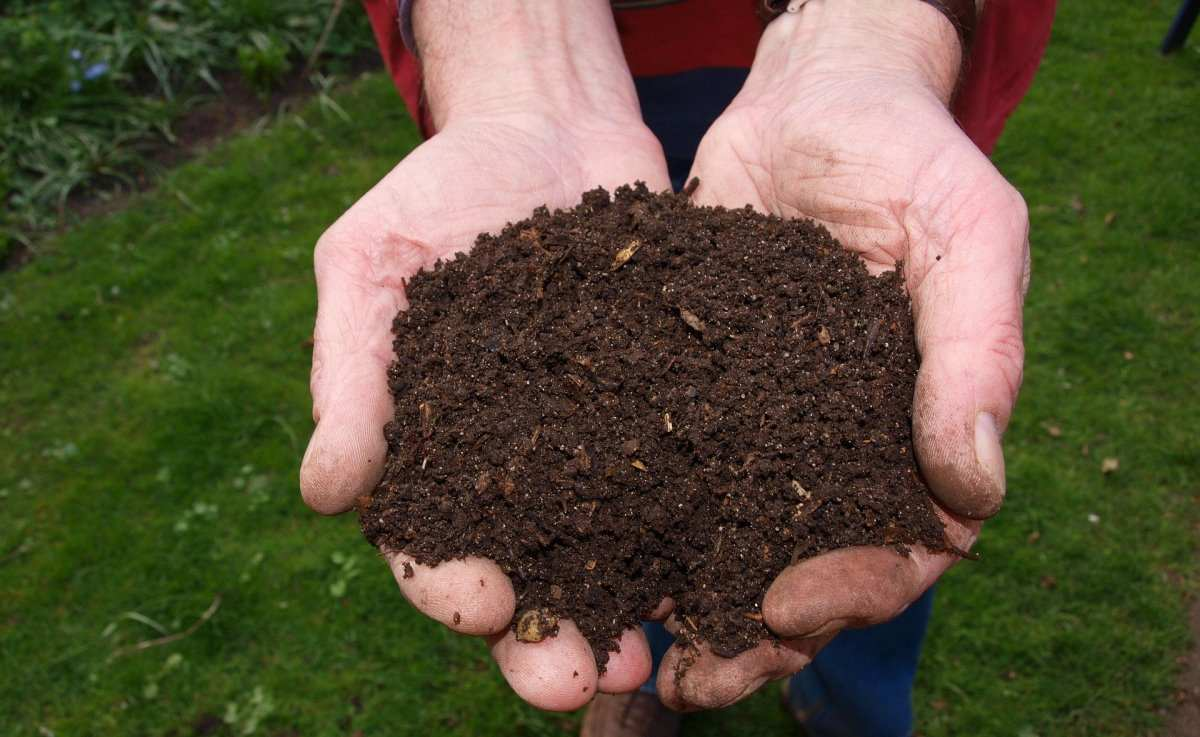 Steps to Start Composting Business in India