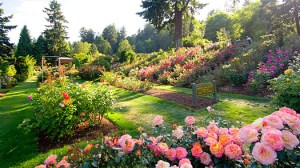 History Of Gardening In India