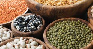 Diseases of Beans