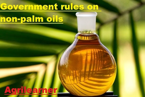 Government rules on non-palm oils