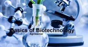 Basics of Biotechnology