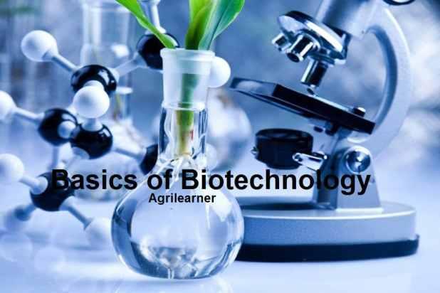 Basics of Biotechnology