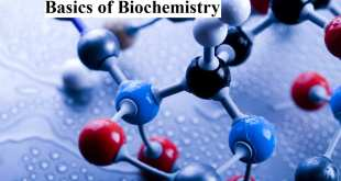 Basics of Biochemistry