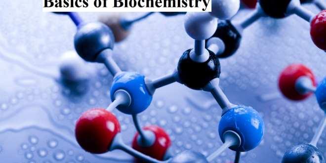 Basics of Biochemistry
