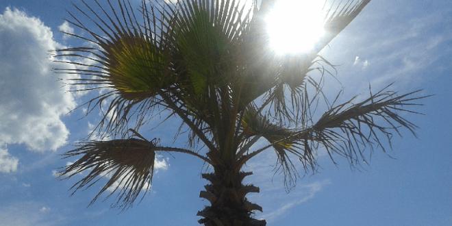 Météo Maroc: Forte vague de chaleur avec chergui cette semaine