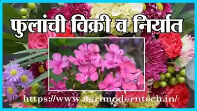 फुलांची विक्री व निर्यात