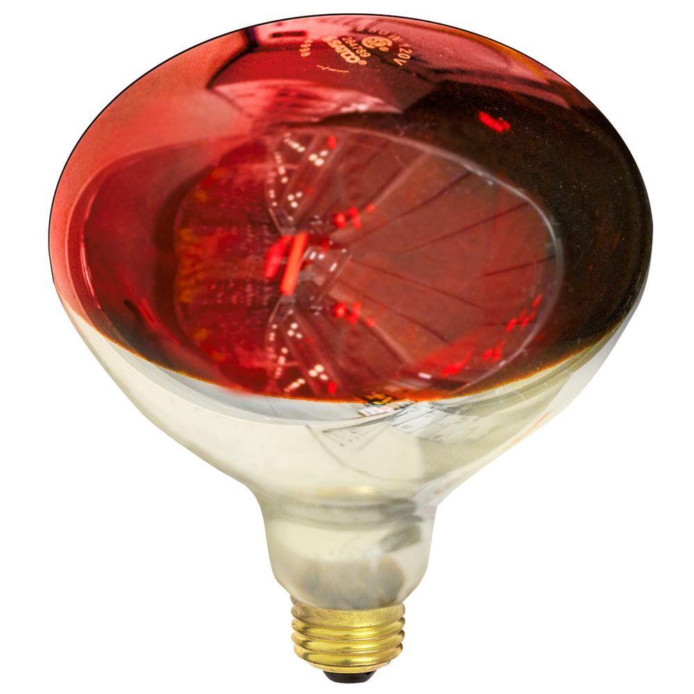 250w Red Heat Lamp R40 Heat Lamp Reptile