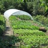 Agricoltura - La Nostra Serra