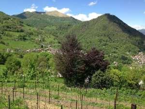Vista Al-Marnich - Visuale Vigna e Valle d'Intelvi