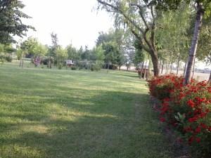 Aria picnic