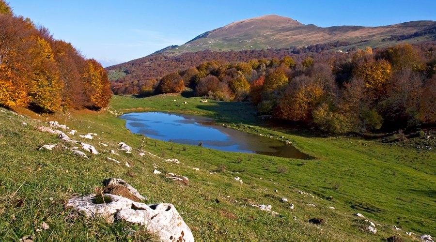 Monte Baldo, giardino d'Europa