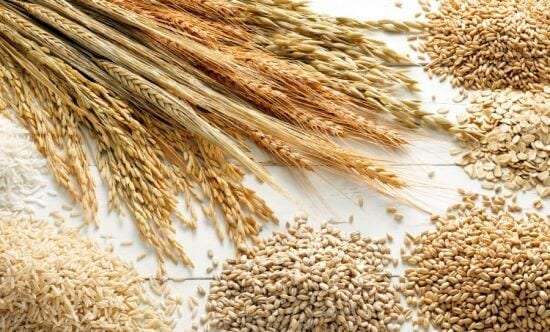 grains-are-most-lucrative-agricultural-business-in-nigeria