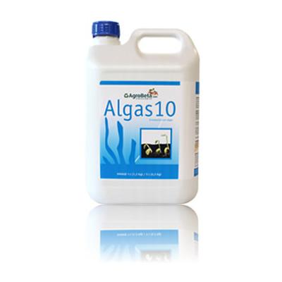 Algas 10