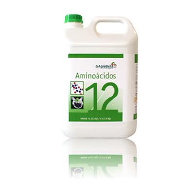 Aminoácidos 12
