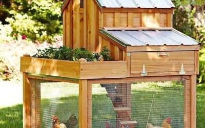 Notre nouveau poulailler en bois pour les jardins
